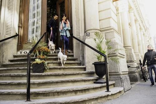 Tetsuhiro-Sachiko-Dogs-in-Montreal_31 (500x333)