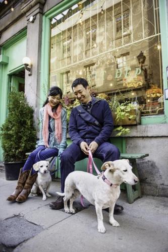 Tetsuhiro-Sachiko-Dogs-in-Montreal_34 (333x500)