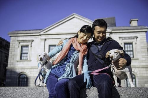 Tetsuhiro-Sachiko-Dogs-in-Montreal_37 (500x333)