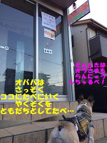 IMG_8415_20161017100134634.jpg