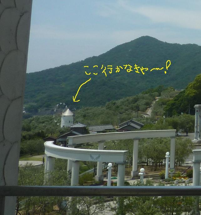 P1320147c.jpg