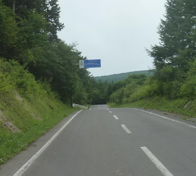 P1320657b.jpg