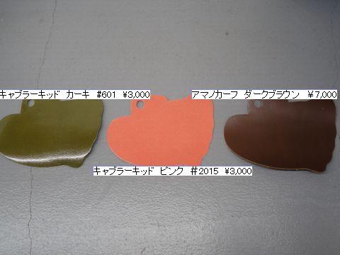 DSC04181a.jpg