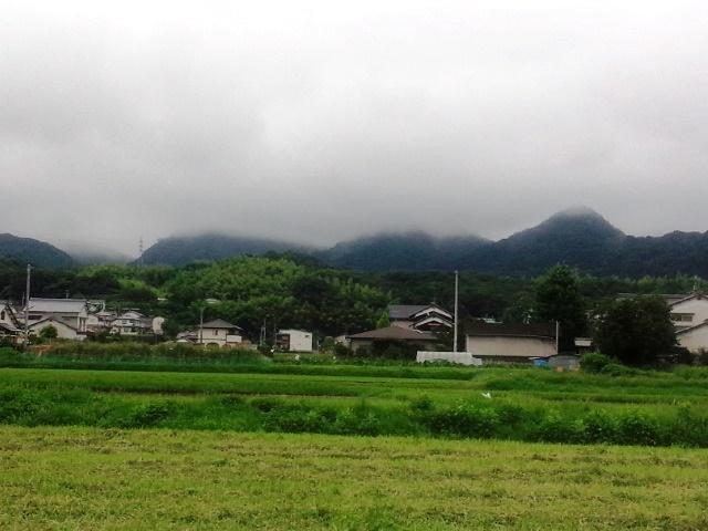 20160709_01高縄山
