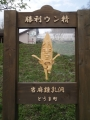 20160509-touma-04.jpg