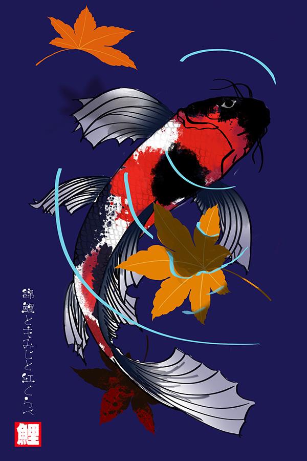 錦鯉ともみじの紅くらべ900