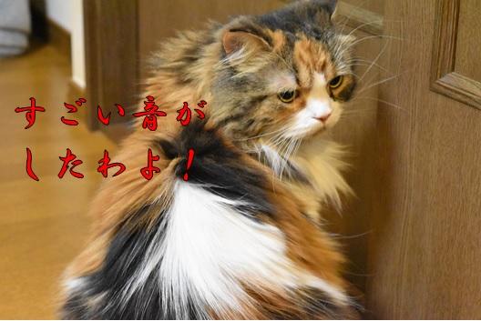 1_201610050023035c6.jpg