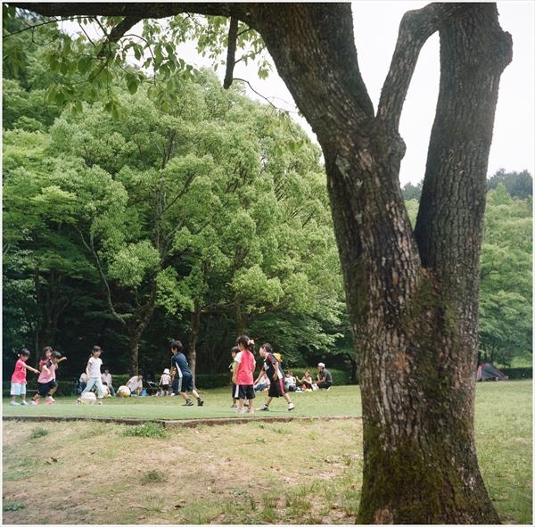 1-ローライコードⅢ-2016-5-29-portara160-百年公園-05250001_R