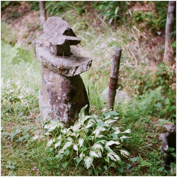 2-s-ローライコードⅢ-2016-5-29-portara160-百年公園-05250003_R