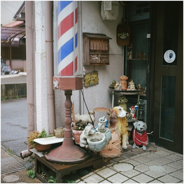 n-ローライⅢ 2016-9-18-portra400-犬山-54230007_R