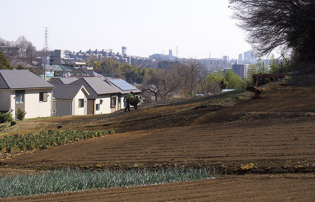 201503町田市小野路