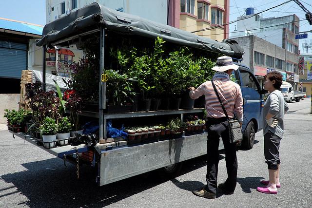018木浦旧市街移動花屋