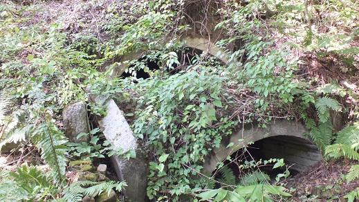 美唄炭鉱滝の沢抗 (3)