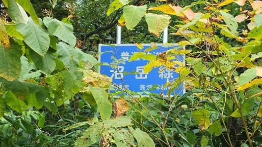 沼岳沢の滝 (2)