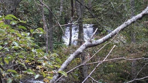 沼岳沢の滝 (7)