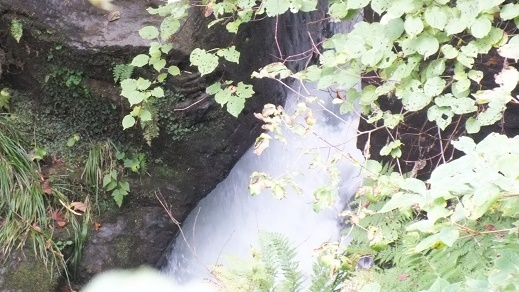 沼岳沢の滝 (19)