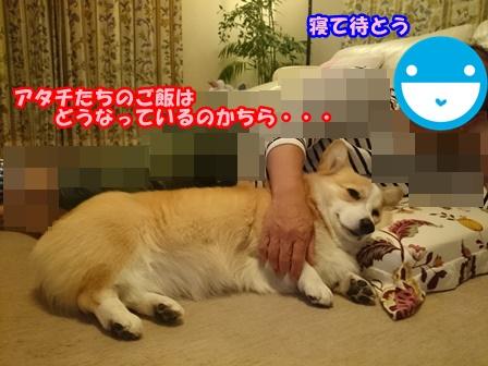 0526菰田さん8