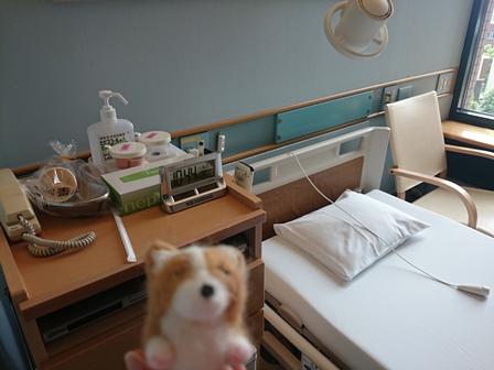 0729入院1