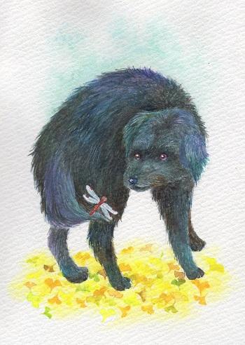 トンボと黒犬