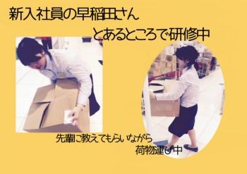 s早稲田さんのコピー