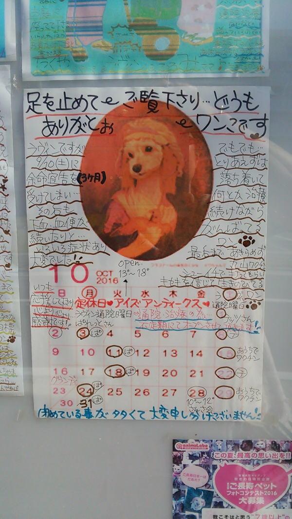 2016年10月babaちゃまカレンダー