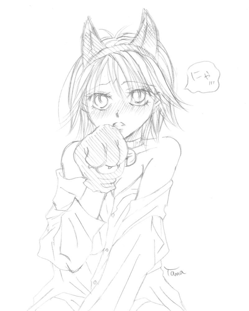 猫耳キョコさん