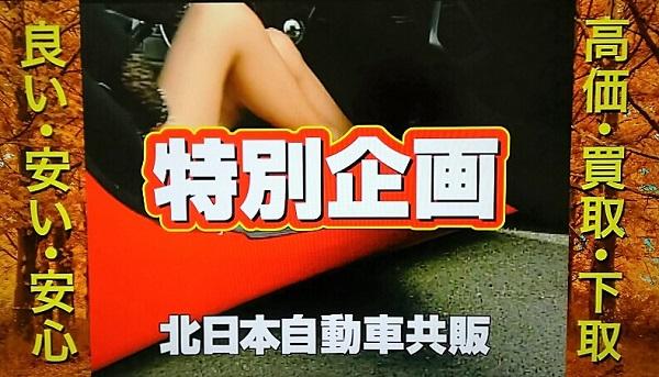 20161022用・脚線美