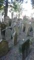 旧ユダヤ人墓地1