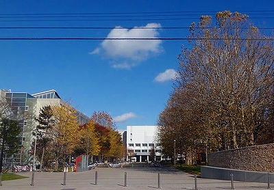 北海道科学大学W