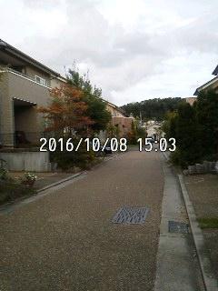 161008_1503~001