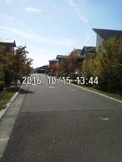 161015_1344~001