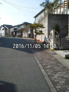 161105_1413~001