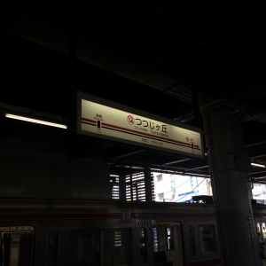 IMG_6986.jpg