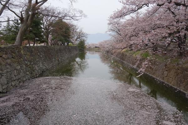 2016.4.10松本城のお堀2