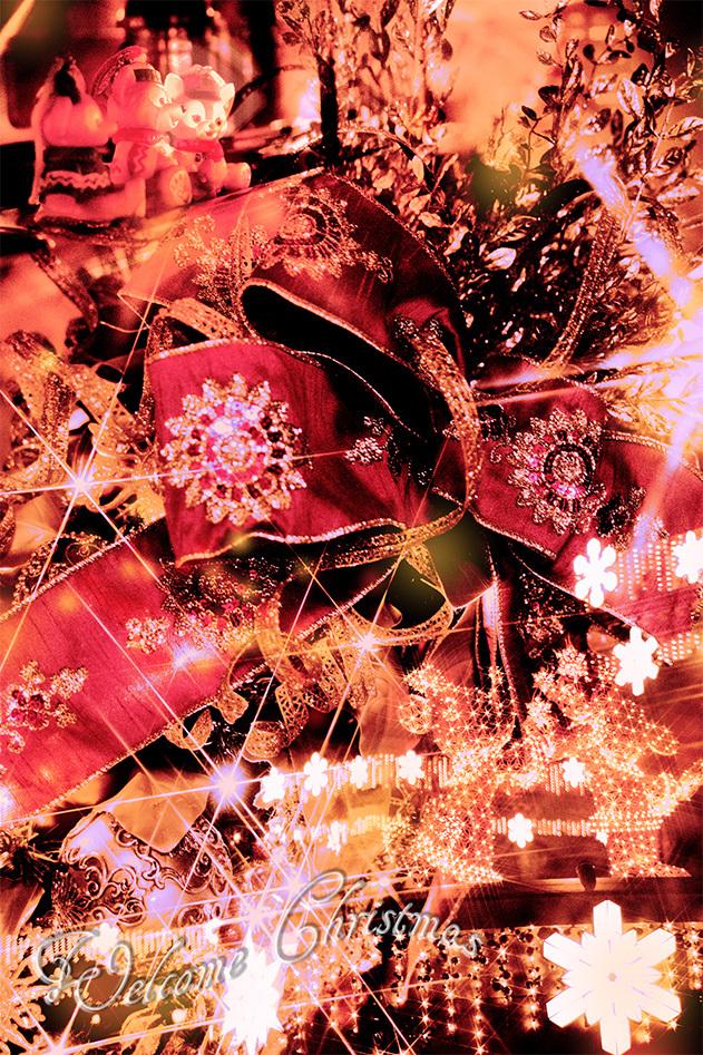 クリスマスの季節がやってきた!1