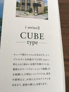 CUBEType