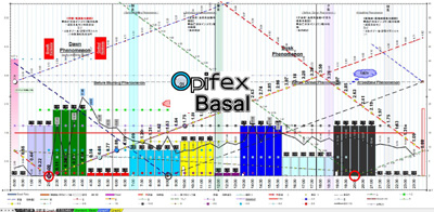 basal参考グラフ
