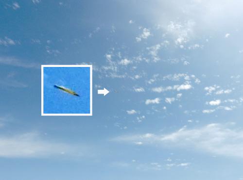 イカ天2号の2機目、イマイチでした。