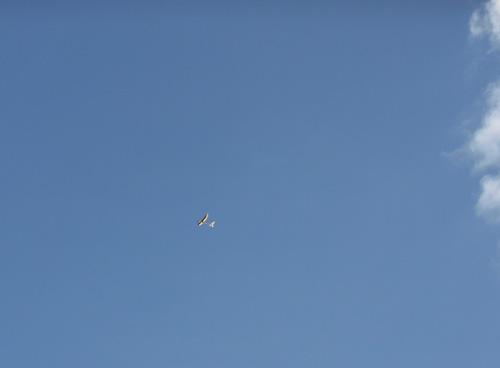 kh-0615AG、その2。