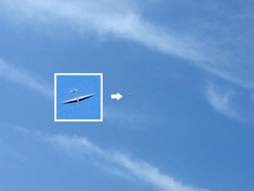 なんちゃって鳥コン機、その2。