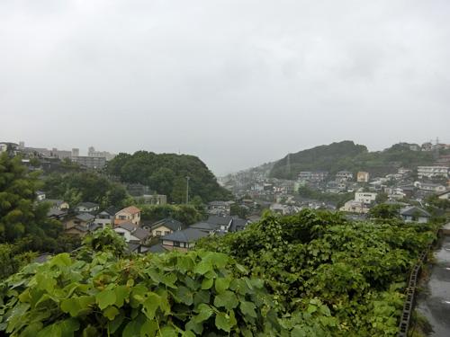 雨でーす。