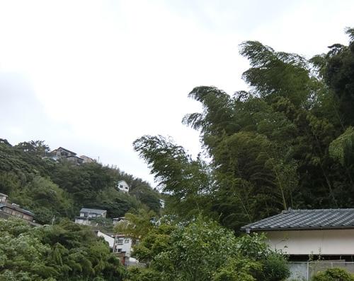 台風の風。