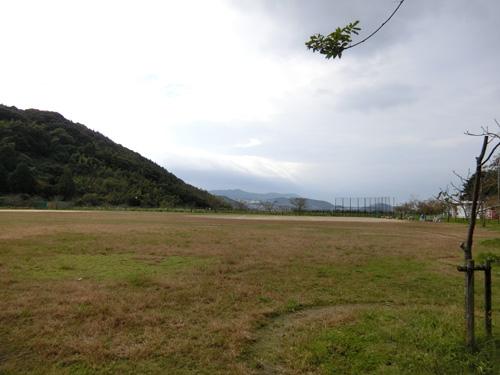 強風の片淵公園。 でした。