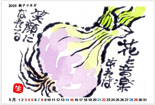 2016-05新タマネギ