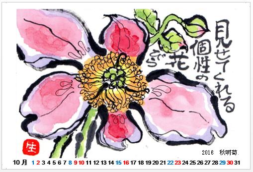 2016-10 秋明菊