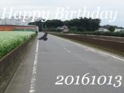 2016101301.jpg