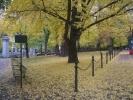 ポートランド公園