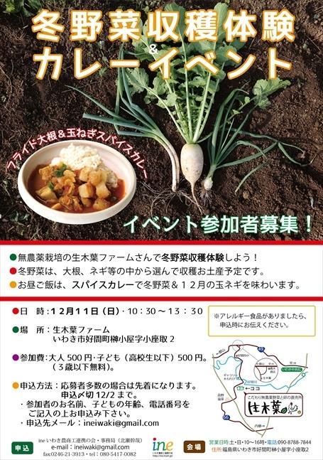 161211冬野菜イベント広告_R