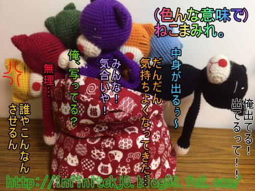 catbag05161.jpg