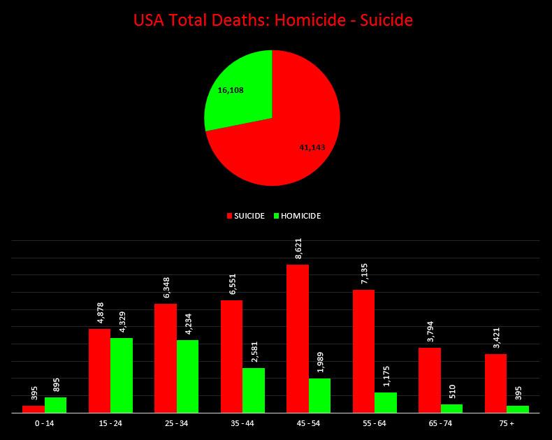 usa-homicide-vs-suicide.jpg